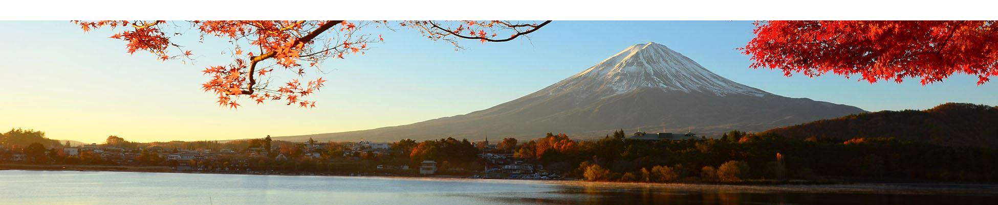 Fuji et momiji