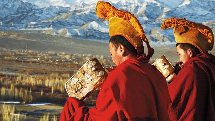 Moine Ladakh Inde