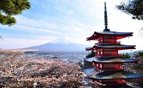Vue du Mont Fuji depuis la pagode Chureito de Kawaguchiko
