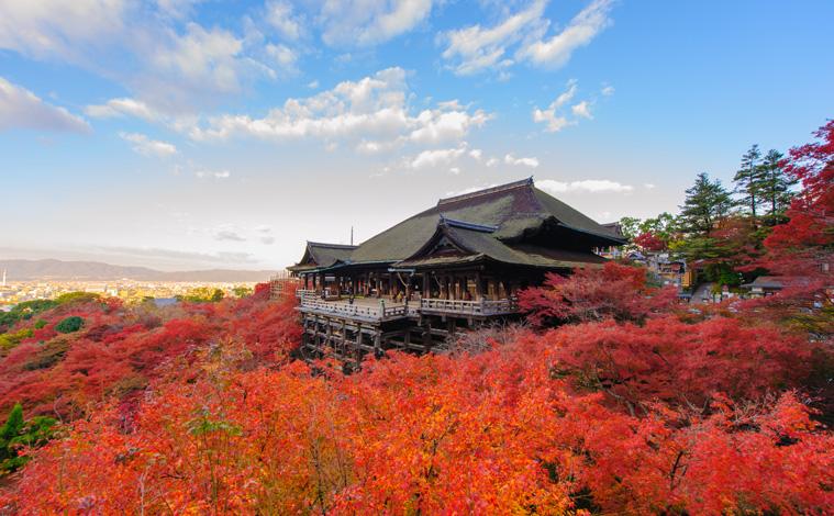 Kyoto-momiji-temple