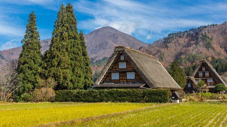 Maison traditionnelle au toit de chaume du village de Shirakawago
