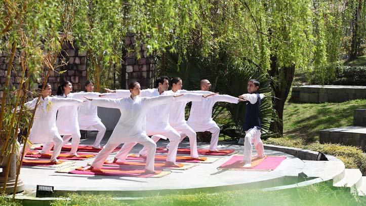 Yoga et Ayuveda Ananda Himalaya