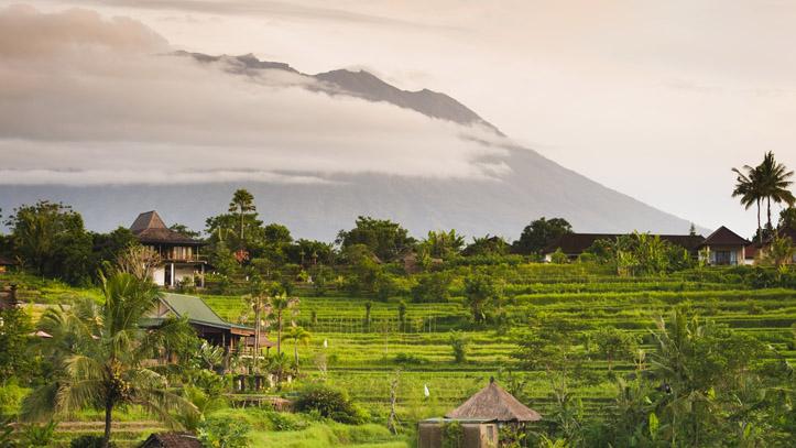Bali indonésie sidemen rizière