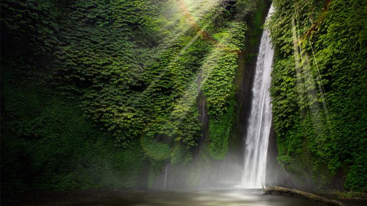 Cascade foret tropicale indonesie