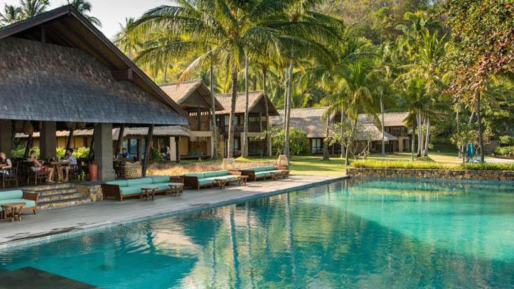 Jeeva Klui piscine palmiers