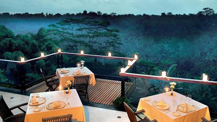 Jungle retreat diner vue