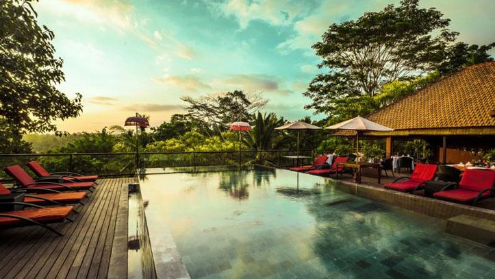 Jungle retreat piscine