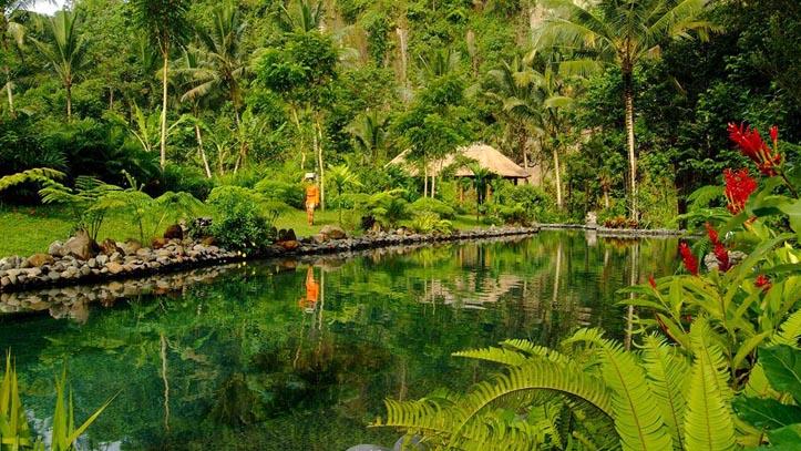 Royal Pitamaha jardin