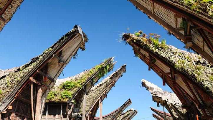Tana Toraja Palawa village liste